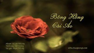 Bông hồng cài áo - Việt Dzũng