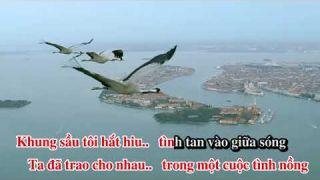 [Karaoke_Vocal] Thung Lũng Chim Bay - Nhạc Việt Dzũng _ Thơ Hoàng Ngọc Ẩn - Lưu Hồng trình bày