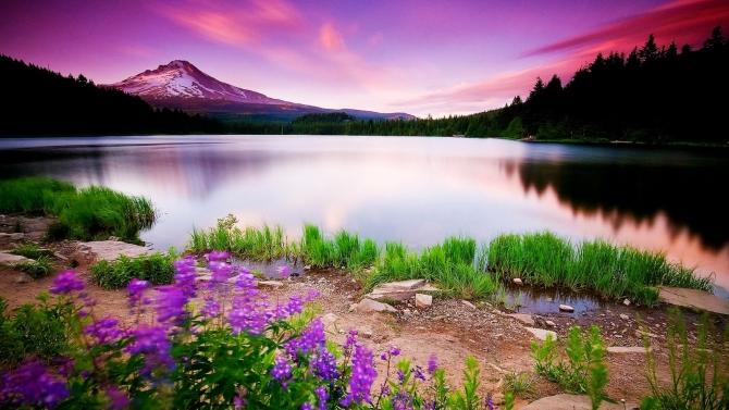 Những bức ảnh động về thiên nhiên tuyệt đẹp.