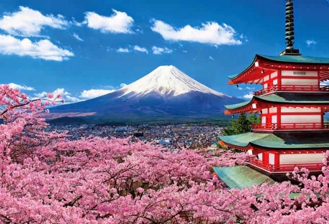 Mùa hoa Anh Đào ở Nhật